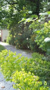 A garden outside La Clef Du Bonheur