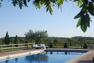 The swimming pool at or near Hostería de Guara