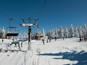 Apartmány Lipno during the winter