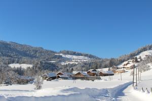 Apartments Wälderhaus im Winter
