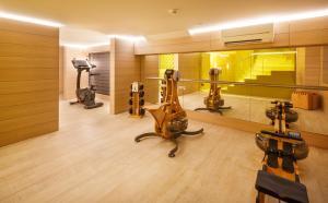 Das Fitnesscenter und/oder die Fitnesseinrichtungen in der Unterkunft Swiss Wine by Fassbind