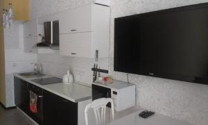 Телевизор и/или развлекательный центр в Апартаменты «Парк Горького»