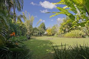 A garden outside Abode @ Byron