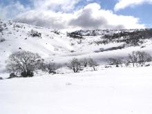 Snowy Mountains Resort and Function Centre during the winter