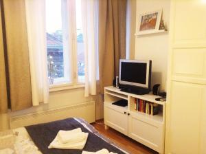 A television and/or entertainment centre at Apartment Agram Centar