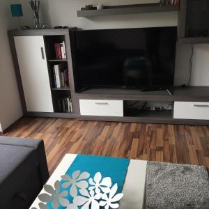 TV/Unterhaltungsangebot in der Unterkunft City FEWO Leipzig
