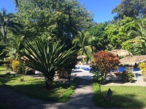 A garden outside Hotel Suizo Loco Lodge & Resort