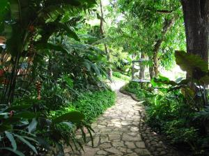 A garden outside Los Almendros de San Lorenzo