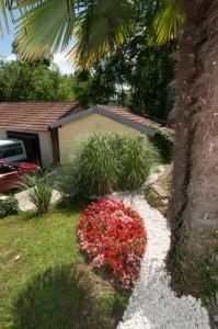 A garden outside Apartments Ana