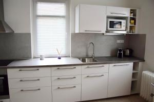 A kitchen or kitchenette at Classical House in Prague 6