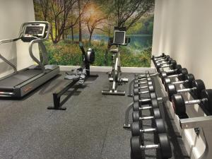 The fitness center and/or fitness facilities at The Royal George Hotel