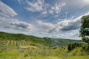 Paesaggio naturale nelle vicinanze dell'agriturismo