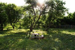 Сад в Домик в Беловежской Пуще