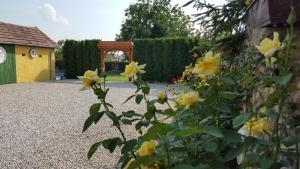 Vonkajšia záhrada v ubytovaní Pension Hostad