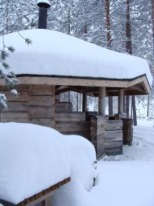 冬のSallainen Panvillageの様子