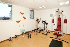 The fitness center and/or fitness facilities at Séjours & Affaires Genève Saint Genis