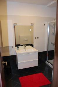 A bathroom at Apartment Spanjol