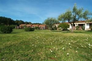 Ein Garten an der Unterkunft Tourist Settlement Koversada Villas