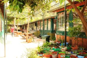 A restaurant or other place to eat at Olympos Zeytin