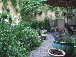 A garden outside Le 253