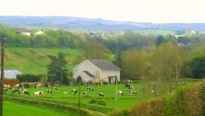 A bird's-eye view of Fairylands Country House