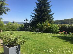 Ein Garten an der Unterkunft Am Hohberg