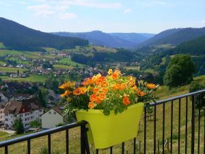 Een balkon of terras bij Pension Garni Talblick
