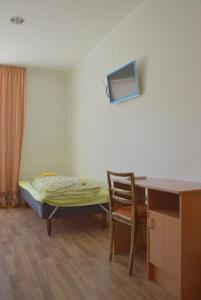 Televiisor ja/või meelelahutuskeskus majutusasutuses Saare Automatic Hostel