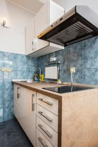 A kitchen or kitchenette at Ava apartmani