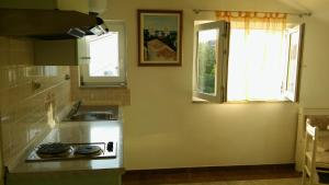 A kitchen or kitchenette at Apartment Lopar