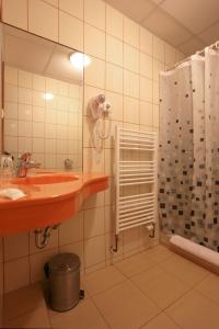 A bathroom at Hotel Zelený Dům