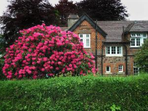 A garden outside Exemead Lodge and Bunkhouse - Exford Hostel