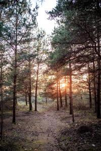Saullēkts vai saulriets, ko var redzēt no kempinga vai tuvumā