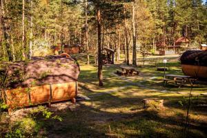 Dārzs pie naktsmītnes Camping Juras Priedes