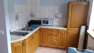 A kitchen or kitchenette at Apartament Sophie