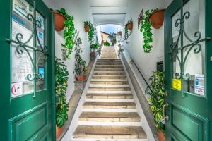 Лобби или стойка регистрации в Hotel Nova Sintra