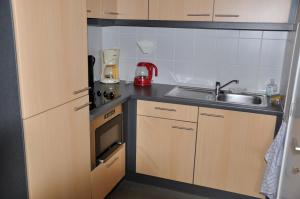 A kitchen or kitchenette at Apartment Franky