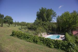 A view of the pool at Agriturismo Il Cavicchio or nearby