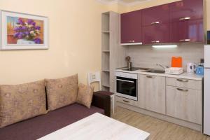 Кухня или мини-кухня в Mars Apartments in Tryavna Beach Complex