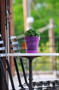 Un balcón o terraza de Mellia