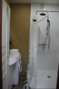 A bathroom at Apartment-2 on Pravda 40