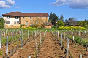 A garden outside Le Clos du Cher en Beaujolais