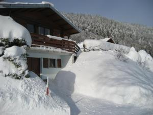 L'établissement Chalet Les Jonquilles en hiver