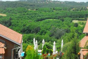 "A bird's-eye view of Hobby Park Holiday Villa ""Mala Ivanca"""