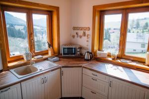 Kuchyňa alebo kuchynka v ubytovaní Drevenica Huty