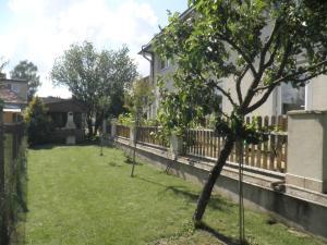 Zahrada ubytování Dom v Záhrade