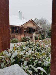 A garden outside Hotel Avonleigh