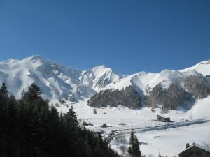 Les Camélias during the winter