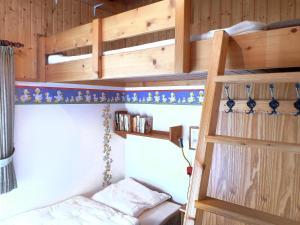 Ein Etagenbett oder Etagenbetten in einem Zimmer der Unterkunft Holiday Home Altes Land.2
