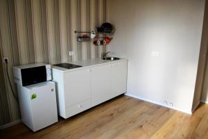 A kitchen or kitchenette at Apartment Yevstafyeva